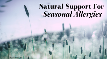 natural support for seasonal allergies